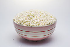 Rice weevil with rice be imperfect in the bowl. stock photography