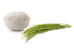 Rice  on a white background Royalty Free Stock Images