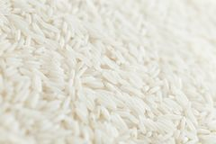 Rice, white grains closeup. Basmati. Unpolished, uncooked, natural, diet, raw for traditional asian cuisine, dish Royalty Free Stock Photos