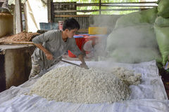 Rice wine factory, Mekong delta, Vietnam Stock Photography