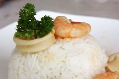 Free Rice With Shrimp Royalty Free Stock Photos - 5735958