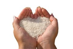 Rice in woman's hands. Royalty Free Stock Photos
