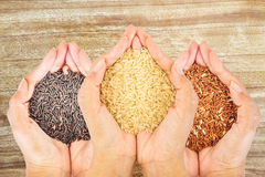 Rice in women hand in isilate on wooden floor. Royalty Free Stock Image