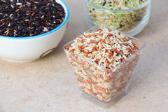 Rice on Wood Tabel. Brown Rice on Wood Tabel Stock Photo