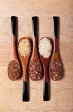 Rice on wooden spoons Stock Images