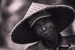 Rice worker Bali royalty free stock image