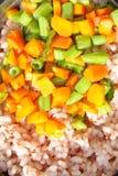 Rice z śmiałymi warzywami fotografia stock