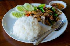 Rice z korzennym smażącym fotografem obrazy stock