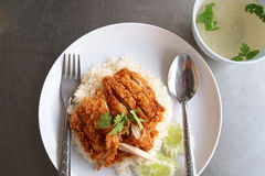 Rice z kurczakiem smażącym Obrazy Royalty Free