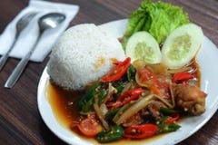 Rice z kurczakiem zakrywającym chilies zdjęcie stock