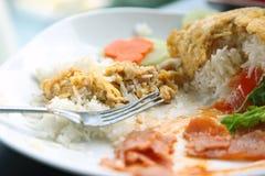 Rice z omletem, Tajlandzki jedzenie Obraz Royalty Free