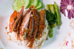 Rice z pieczoną kaczką Obraz Stock