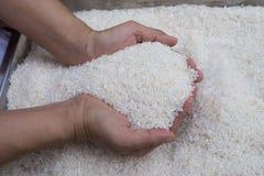 Rice z ręki mieniem Zdjęcie Stock