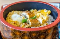 Rice z węgorzem Zdjęcia Royalty Free