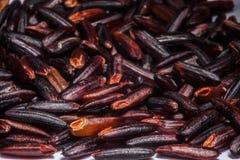 Riceberry stock afbeeldingen