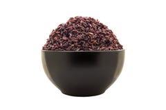 Riceberry cozinhado isolado no fundo branco Imagens de Stock