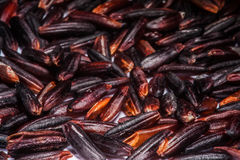 Riceberry. Healthy Brown Rice berry in Thailand Stock Image