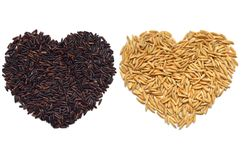 Riceberry and paddy rice heart shape. On white background royalty free illustration
