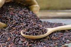 Riceberry-Reis im hölzernen Löffel auf Stapelreishintergrund stockfoto