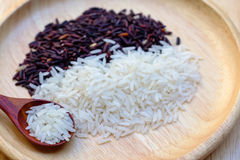 Riceberry Rice Royalty Free Stock Photos
