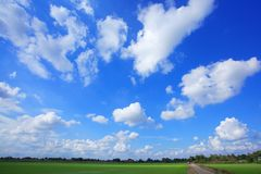 Ricefält och Sky Royaltyfri Bild