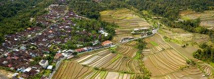 Ricefield Бали и съемка антенны деревни Стоковое Изображение RF