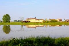 ricefield lomellina Италии Стоковые Изображения RF