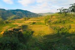 Ricefields在越南,河江市 免版税库存照片