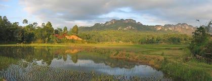 湖ricefields 免版税图库摄影