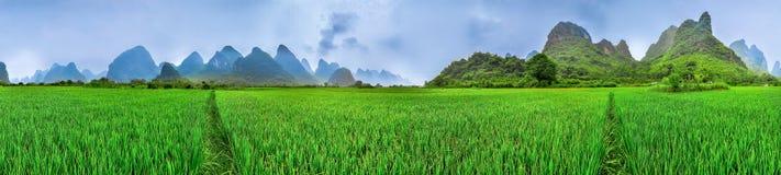Ricefields de Yangshuo Parorama, paisaje de la montaña del karst, Guilin, Imagen de archivo libre de regalías