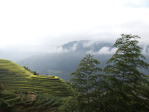 Ricefields of Longsheng Stock Photography