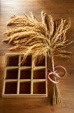 Ricekorn arkivbild
