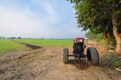 Ricelantgård Royaltyfri Bild