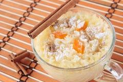 Ricepudding med pumpa, socker och kanel Fotografering för Bildbyråer