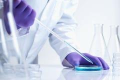 Ricerca in biotecnologia in laboratorio Immagini Stock