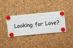 Ricerca dell'amore? Immagine Stock