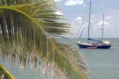 Ricerca dell'isola Fotografia Stock