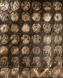 Ricerca di CT della testa umana sui precedenti metallici arrugginiti obsoleti immagine stock libera da diritti