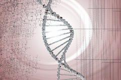 Ricerca genetica in biotecnologia Immagine Stock