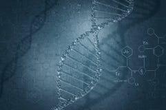 Ricerca genetica in biotecnologia Fotografia Stock Libera da Diritti