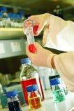Ricerca scientifica Fotografia Stock