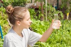 Ricercatore che verifica la qualità dell'acqua Immagine Stock Libera da Diritti