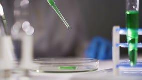 Ricercatore chimico che lavora nel laboratorio con i liquidi variopinti archivi video
