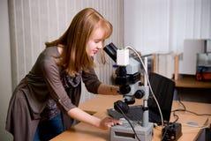 Ricercatore di bellezza che guarda tramite il microscopio in laboratorio Fotografia Stock Libera da Diritti
