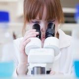 Ricercatore femminile che utilizza un microscopio in un laboratorio Immagini Stock Libere da Diritti