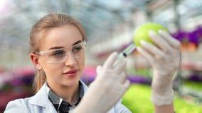 Ricercatore femminile di biologia che verifica composizione utile in mela verde facendo uso del primo piano della siringa video d archivio