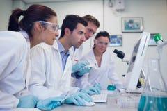 Ricercatori seri che esaminano schermo di computer in laboratorio Immagine Stock