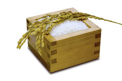 Rices in the wood box Royalty Free Stock Photography