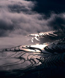 Riceterrasser av yuanyang arkivbilder