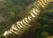 Riceterrasser av yuanyang, yunnan, porslin fotografering för bildbyråer